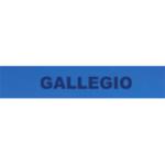 gallegio logo